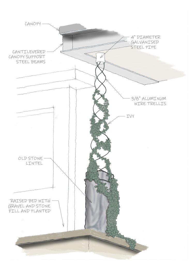 Isometric sketch of the living downspout. Showing the downspout in the roof where water drops onto the ivy and lintel.